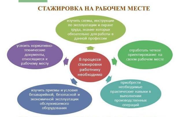 Образец положения о стажировке вновь принятых работников: понятие и структура