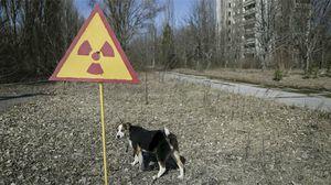 Дополнительный отпуск чернобыльцам, его длительность и порядок оплаты