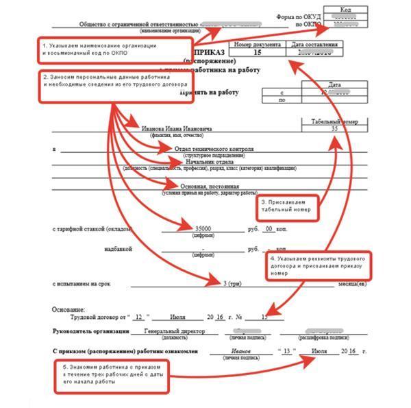 Список документов при приеме на работу: что необходимо?