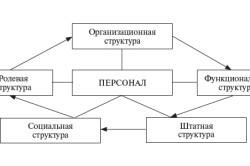 Структура предприятия и его персонал: рекомендации по формированию